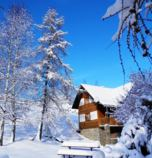 Cottage Jezersko 789 - 73693