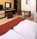 Wellness hotel*** Bešeňová 2619 - studio Standard: 1 x double-bed (1 x  double bed), hair dryer, kitchen corner (fridge, electric kettle, cooker with two burners), bathroom (shower cabin, WC in the bathroom, wash-basin), pay TV, radio, telephone, seating, safe, Internet for free, minibar