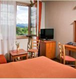 Wellness hotel**** Bešeňová 2621 - double-bed Standard:   (1 x  double bed), pay TV, radio, telephone, Internet for free, minibar, fridge, safe for free, Own bathroom in room (shower cabin, washbasin, WC in the bathroom, hair dryer)