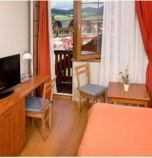 Wellness hotel**** Bešeňová 2621 - double-bed Classic:   (1 x  double bed), pay TV, radio, telephone, Internet for free, minibar, fridge, safe for free, Own bathroom in room (shower cabin, washbasin, WC in the bathroom, hair dryer)